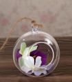 Boule suspendue ouverte décorative Translucide